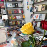De manera virtual realizarán Fiesta del Libro y la Rosa