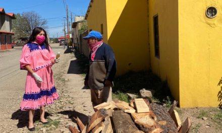 Estudiantes Tarahumaras crean gel antibacterial con hierbabuena y chuchupate