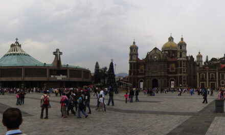 Catedral y Basílica con planes para reabrir el 20 de julio