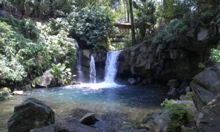 Parque Nacional Barranca del Cupatitzio reabre sus puertas