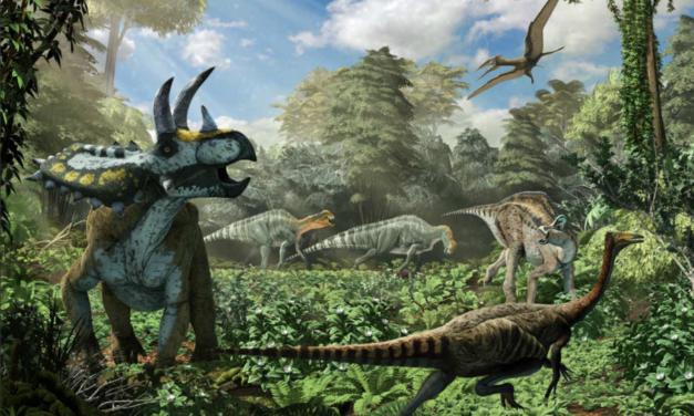 Sin precedentes: encuentran restos de nuevo dinosaurio en Coahuila